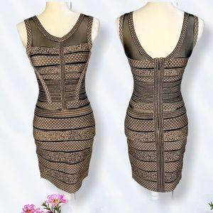 Cinderella Couture Woman's Brown Mini Dress Sz M.
